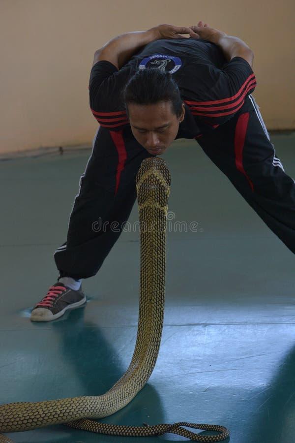 Uitvoerdersspel met cobra tijdens een show in een dierentuin royalty-vrije stock afbeeldingen
