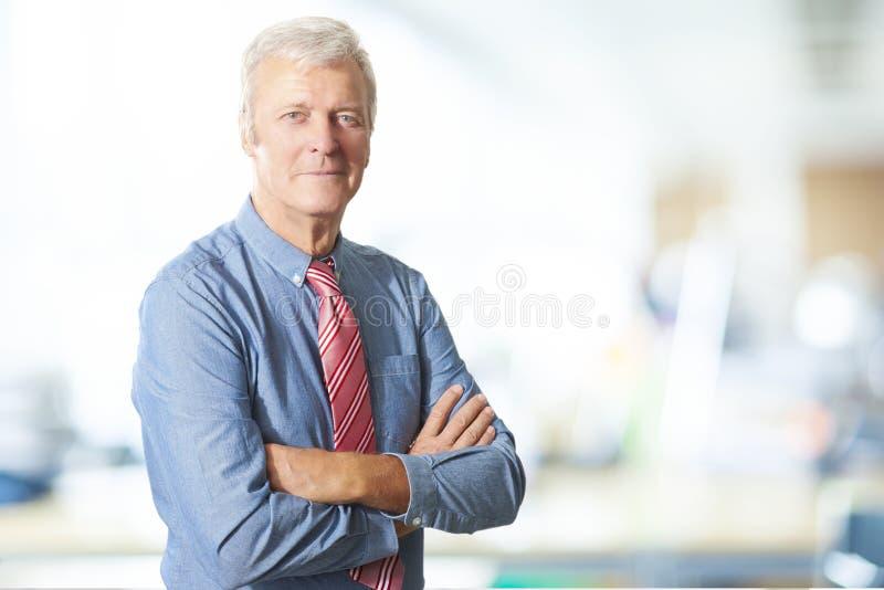 Uitvoerend hoger managerportret royalty-vrije stock foto's