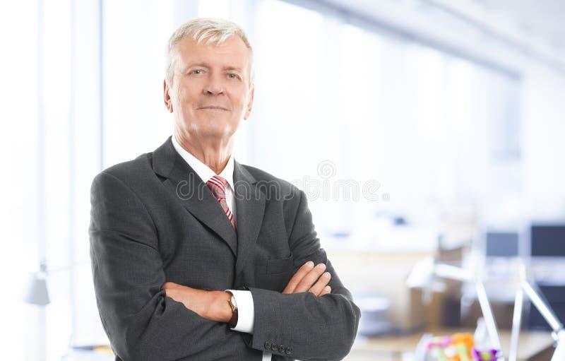 Uitvoerende hogere zakenman stock afbeelding