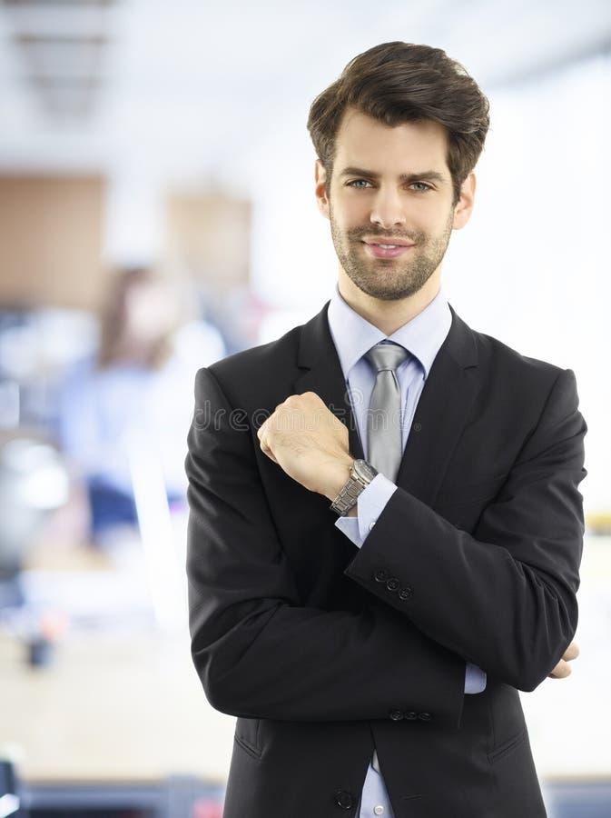 Uitvoerende zakenman royalty-vrije stock afbeelding