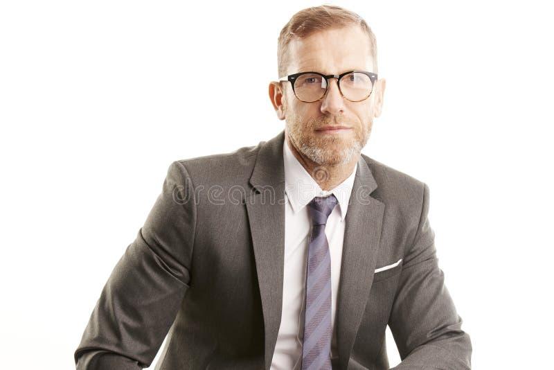 Uitvoerende zakenman Ge?soleerd studioportret stock afbeeldingen