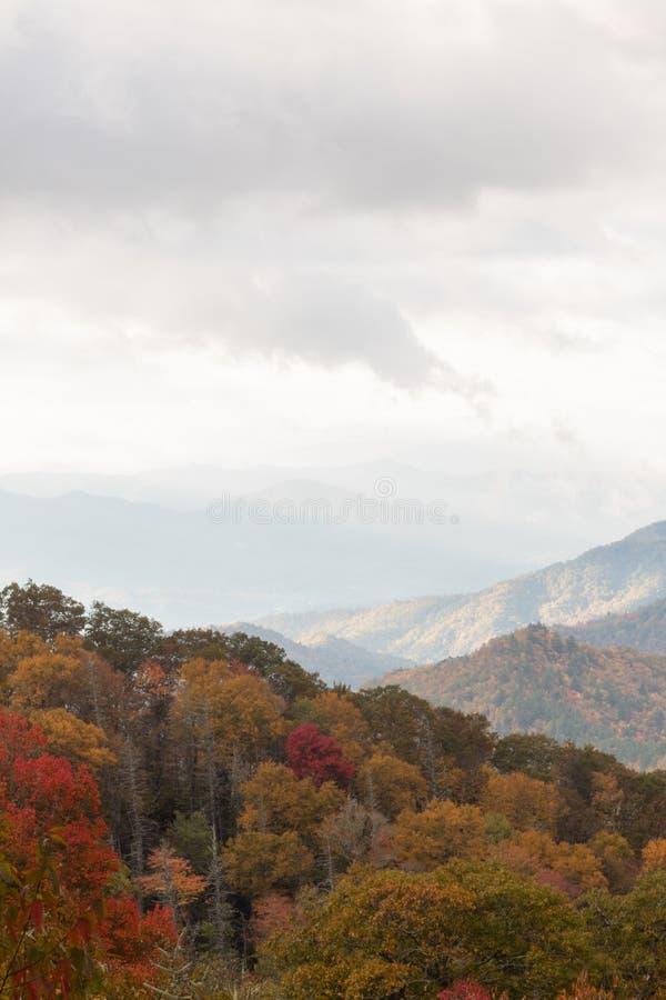 Uitzichtmening van Great Smoky Mountains op bewolkte dalingsdag, bomen in de herfstkleuren stock afbeelding