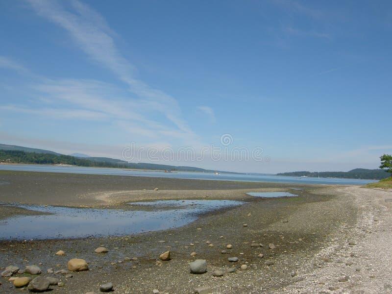 Download Ujścia obraz stock. Obraz złożonej z natura, ocean, niebo - 137685