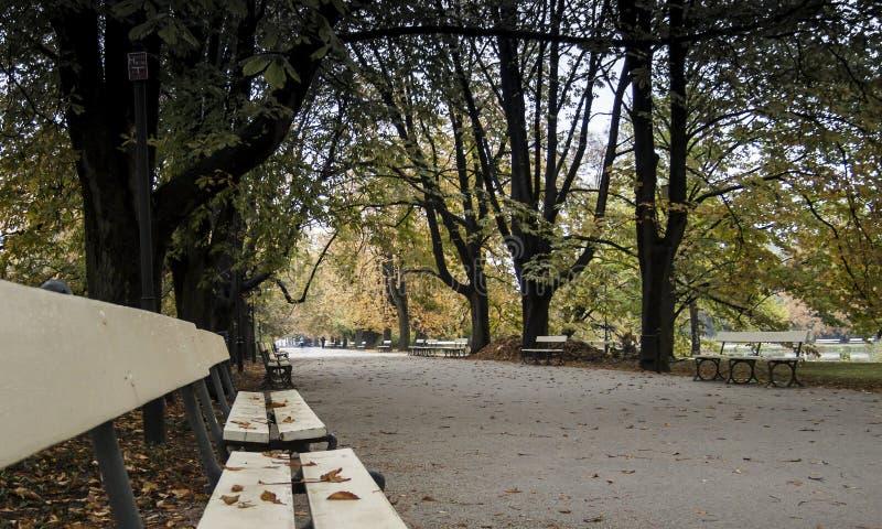 Ujazdowski公园在华沙-有长凳的公园胡同在秋天 免版税库存照片