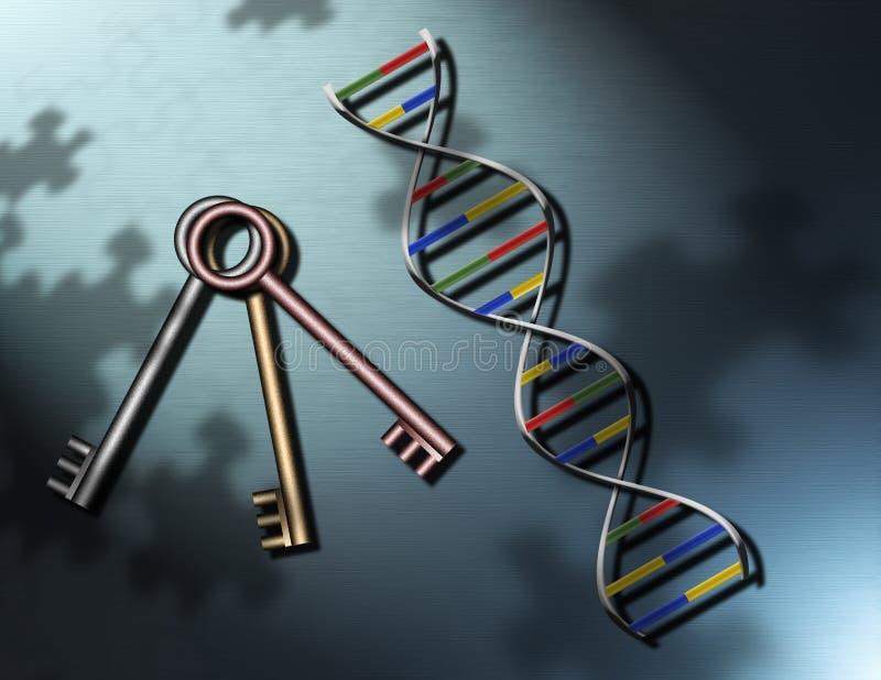 układanki klucz ilustracja wektor