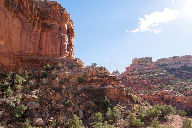 ?uki parki narodowi, Moab, Utah zdjęcie royalty free