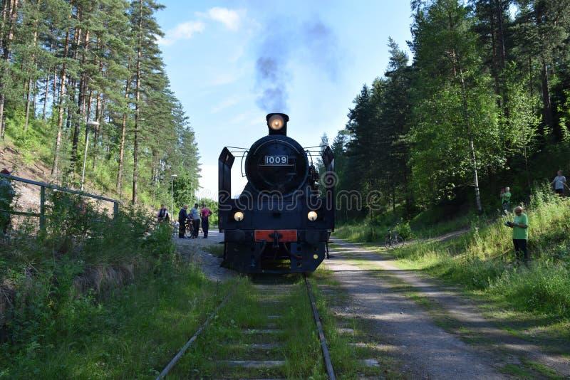 Ukko-Pekka en Lahti, Finlandia fotos de archivo libres de regalías