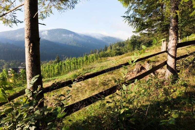 Ukraina Carpathians wioski powietrze, zadziwiaj?cy pi?kny halny t?o obraz royalty free
