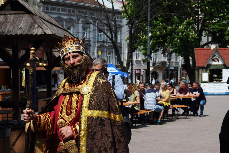 Ukraina Lviv, Maj, -, 2019: M??czyzna w karnawa?owym kostiumu kr?lewi?tko Danylo Galitsky obrazy stock
