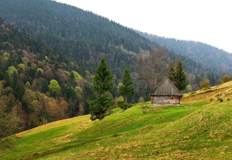 Ukraine Carpathian stock image