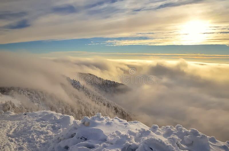 ukraine för dragobratliggandeberg vinter royaltyfria foton