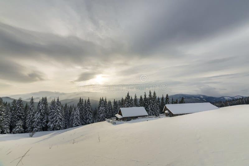 ukraine f?r dragobratliggandeberg vinter Gamla trähus på snöig röjning på bakgrund av bergkanten, den prydliga skogen och molnig  arkivfoto