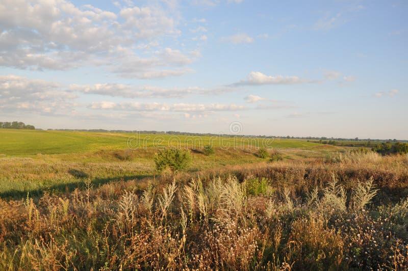 Ukraine farm day, beautiful field landscape stock photography