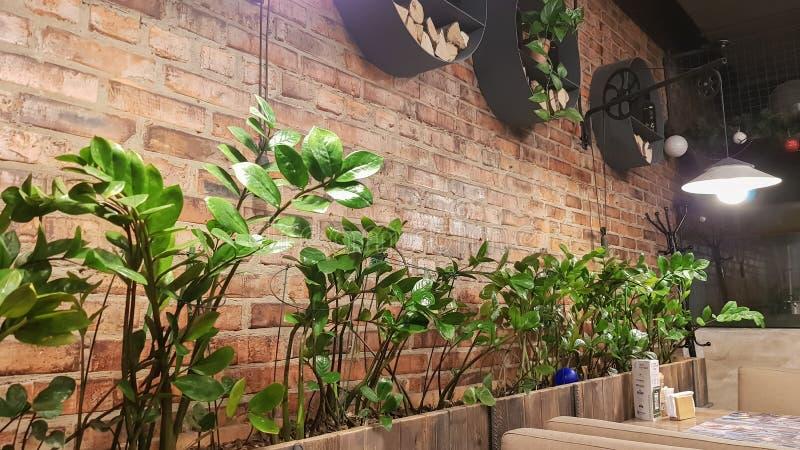 259 Brick Interior Walls Restaurant Photos Free Royalty Free Stock Photos From Dreamstime