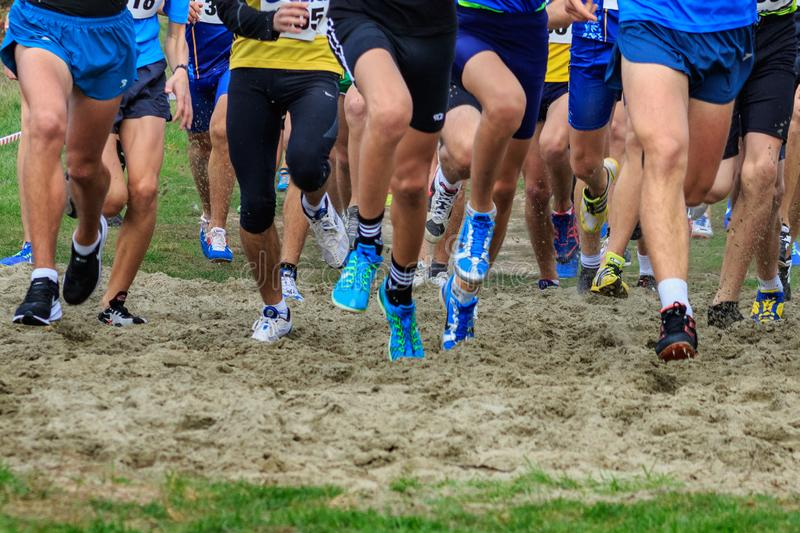Ukrainian Cross Country Championships in Uzhgorod royalty free stock images