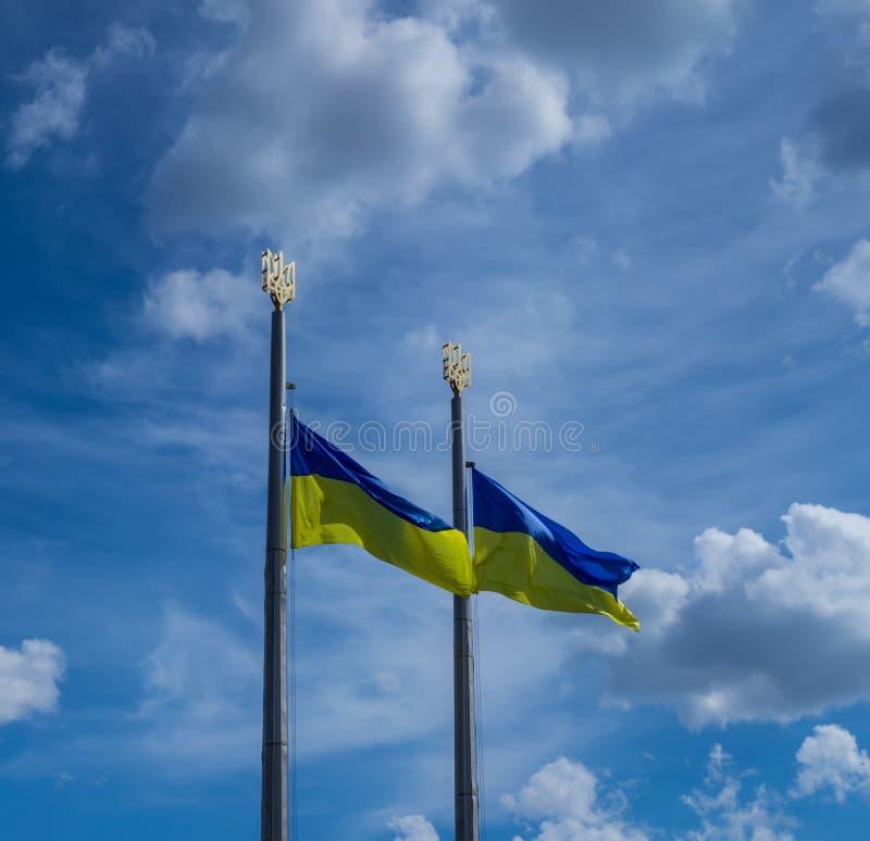 Ukrainian flag royalty free stock photo