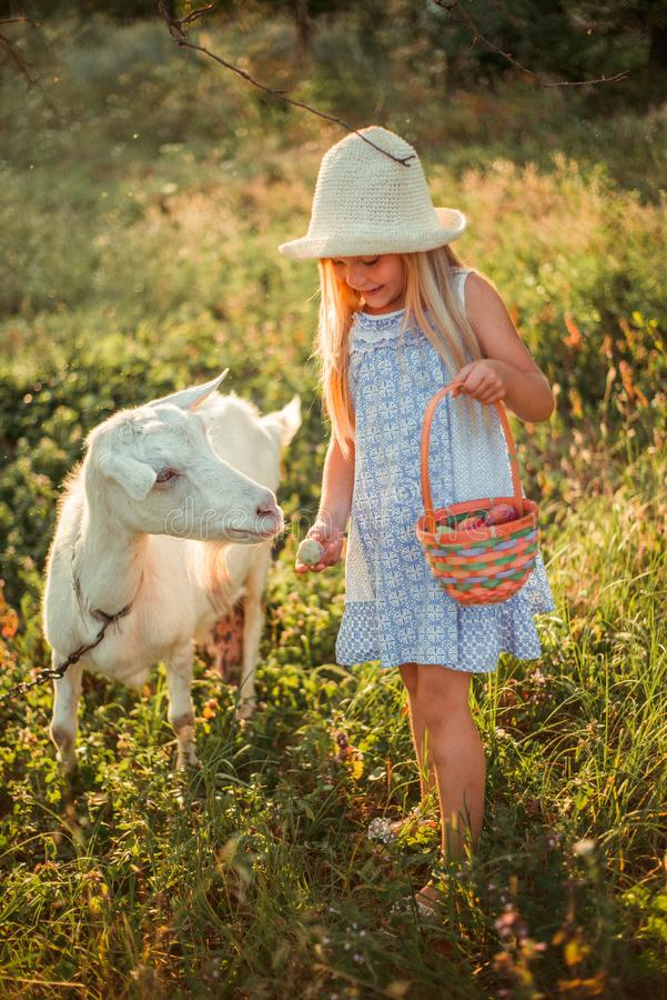 Ukrainian girl on a farm feeds a goat. Cute little girl with long blonde hair at sunny sunset spends time with a pet. Cute baby 6 royalty free stock images