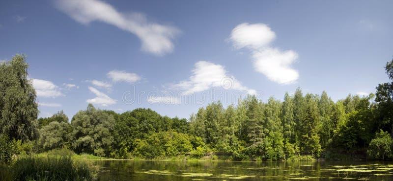 Ukrainian nature royalty free stock photography