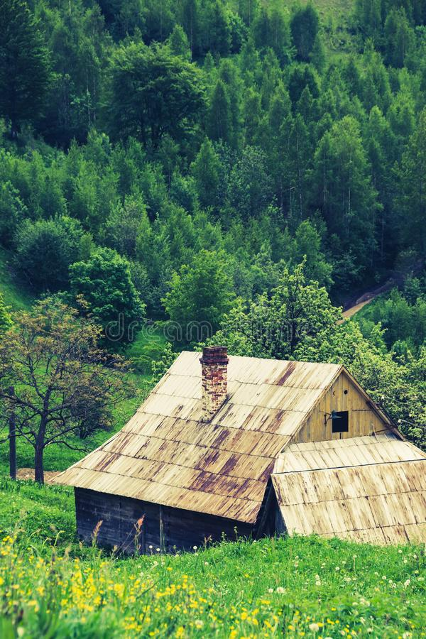 Rural house in woods. Ukrainian old wooden rural house in woods of Carpathian Mountains. Vintage country background with rich green color palette. Classic stock photography