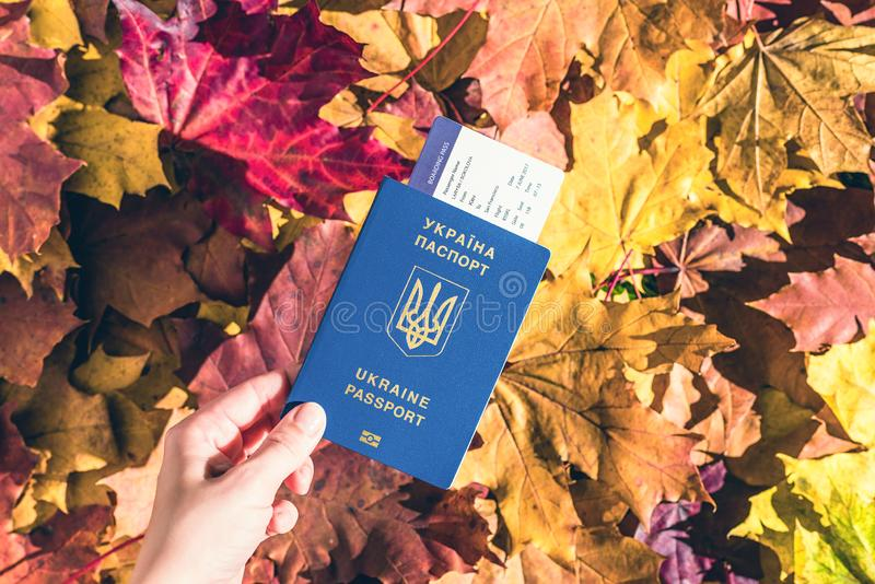 Ukrainian passport with boarding pass in the woman hand maple leaves background in the autumn forest. Travel Concept. Top view. Ukrainian passport with boarding stock photography