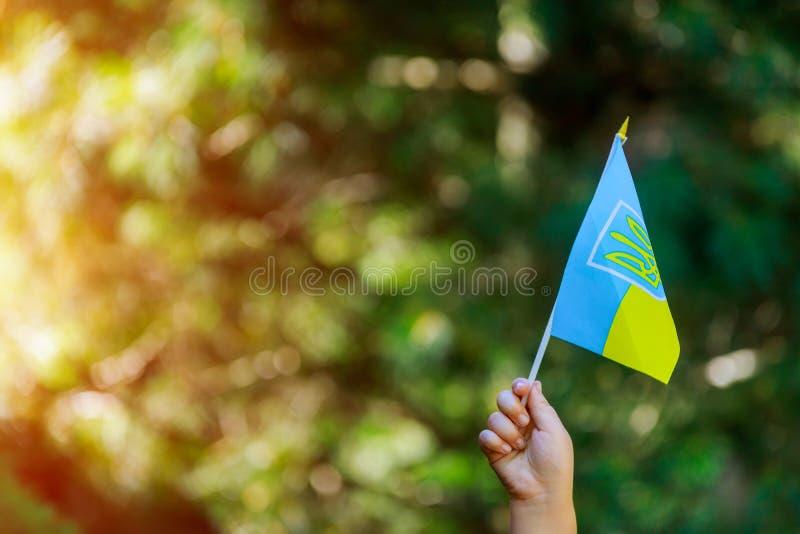 Ukrainian patriot hold of ukrainian flag daylight stock photo
