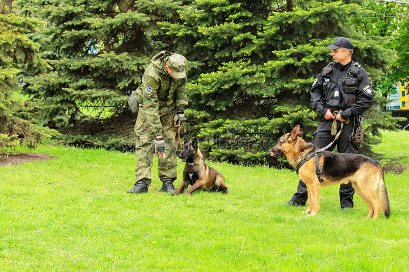 Ukrainian police dog handlers with trained shepherd dogs protect public order at a mass event. Dnipro city , Dnepropetrovsk, Ukraine, May 9, 2018. Ukrainian stock images
