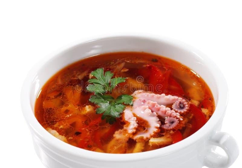 Ukrainien russe de solyanka de poissons de cuisine images stock