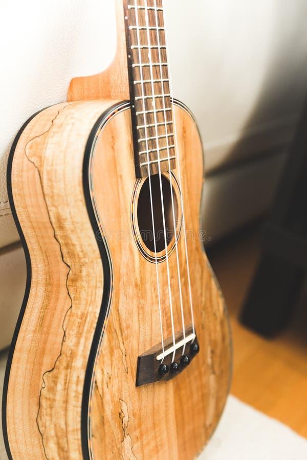 Ukulélé classieuse avec la finition de fibre de bois photographie stock