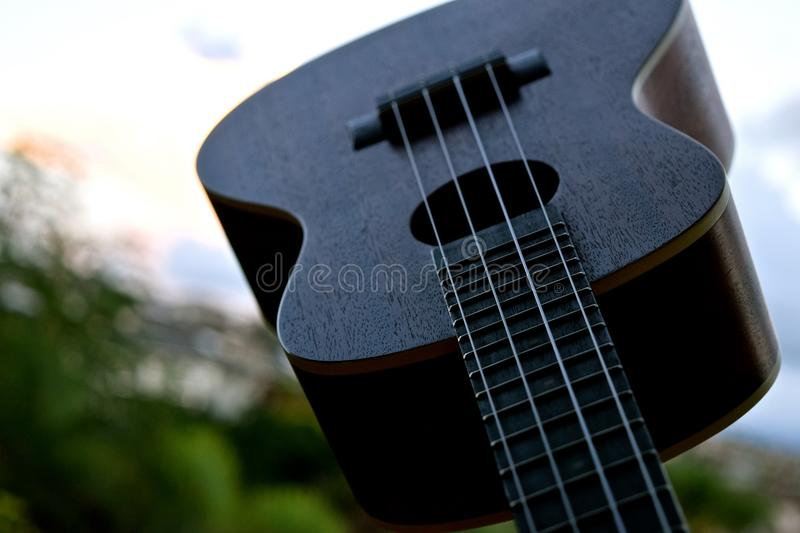 Ukulele Closeup. A small 4 stringed musical instrument that was popularized when it was introduced to Hawaii stock image