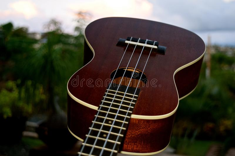 Ukulele Closeup. A small 4 stringed musical instrument that was popularized when it was introduced to Hawaii royalty free stock photography