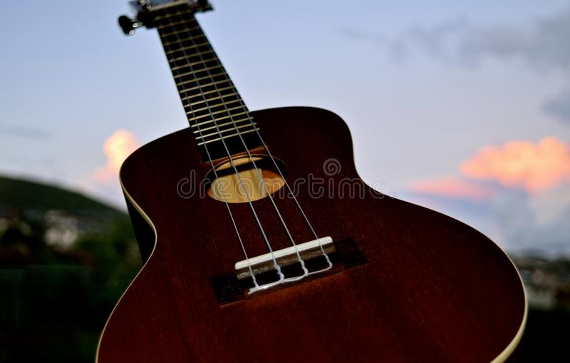 Ukulele Closeup. A small 4 stringed musical instrument that was popularized when it was introduced to Hawaii stock photo