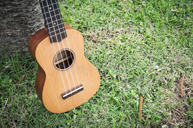 Ukulele on grass field. Acoustic music instrument. Easy to learning. Mini size less than guitar. Four line. Fade color tone with dark vignette. Vintage style royalty free stock image