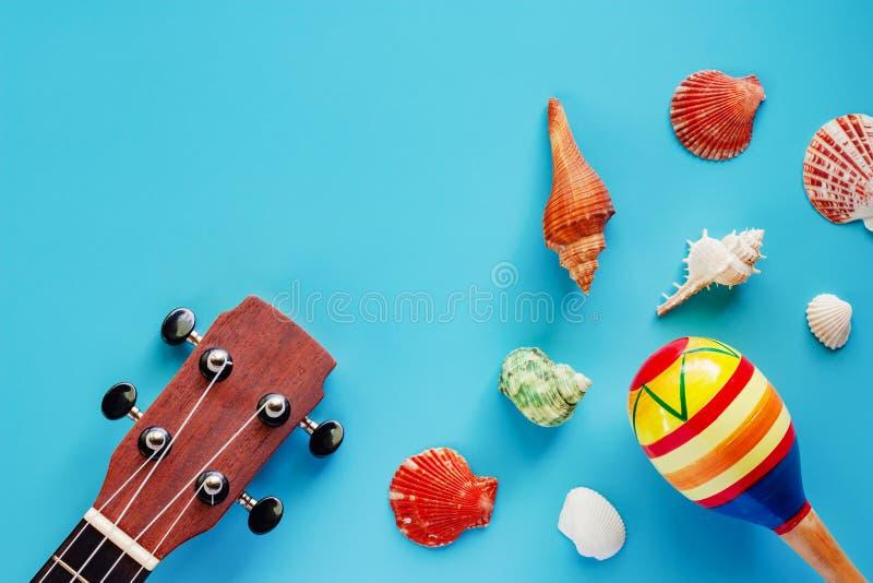 Ukulele, marakasy i morze skorupy na błękitnym tle, obraz stock