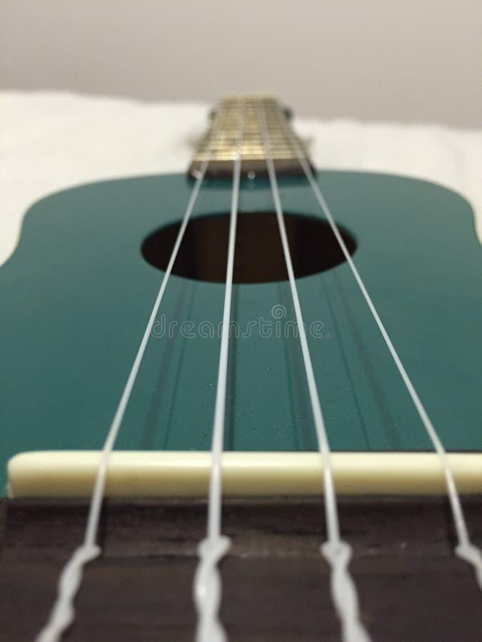 Ukulele strings stock photography