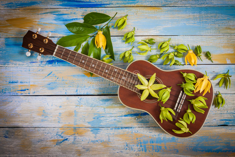 Ukulele with Ylang-ylang flower and leaf royalty free stock photos
