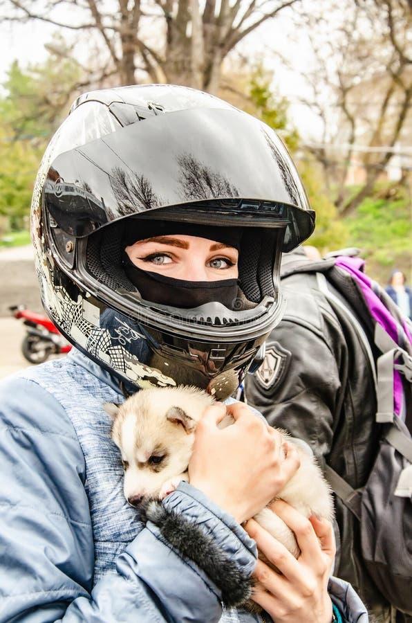 Ul'janovsk, Russia - 3 maggio 2019: Apertura della stagione del motociclo Ragazza in un casco del motociclo con un cucciolo del h fotografia stock