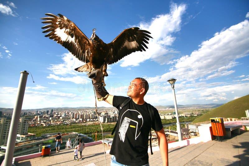 Ulaanbaatar Mongolia July 3 ,2016 - The man catch a Hawk at Zaisan Memorial stock photos