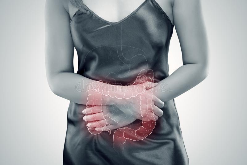 Ulcerative colitis UC. intestine. Ulcerative Colitis, The photo of large intestine is on the woman`s body against gray background, Female anatomy, Concept with royalty free stock images