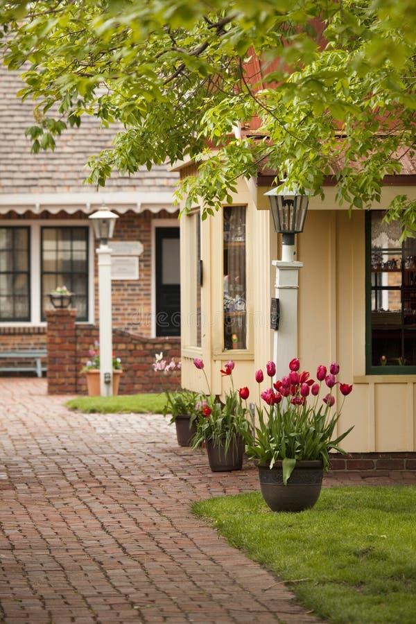 ulica ceglani tulipany obrazy stock