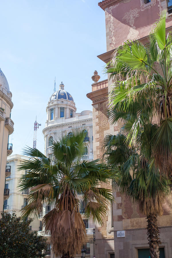 Ulica dekorująca z drzewkami palmowymi w Barcelona obraz royalty free