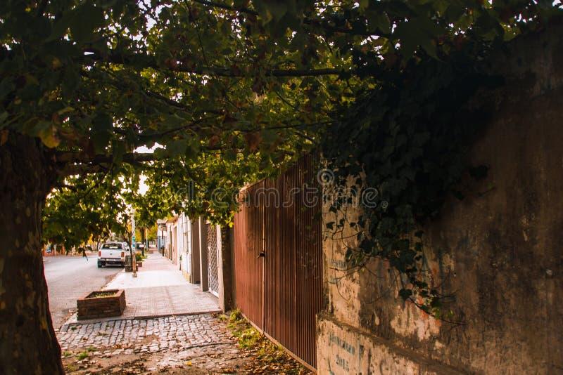 Ulica o Necochea, Buenos Airesil mo?e 6 2019 fotografia royalty free