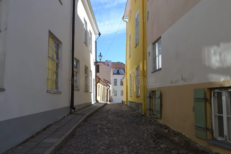 Ulica w centrum Tallinn fotografia royalty free