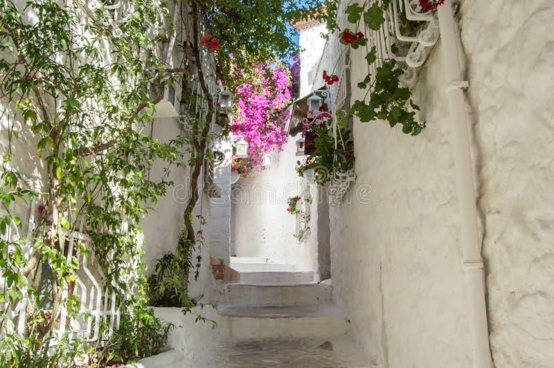 Ulicy stary Marmaris Wąskie ulicy z krokami lub schodki wśród domów z białą cegłą, zielonymi roślinami wokoło i kwiatami wewnątrz zdjęcia stock