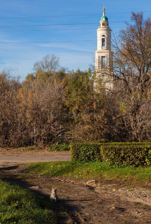 Ulicy stary miasto Electrogorsk przypuszczenia katedralna dmitrov Kremlin Moscow pocztówkowa regionu Russia zima Rosja obrazy royalty free