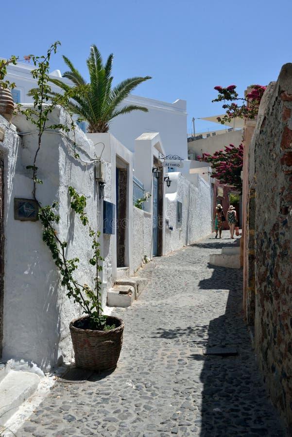Uliczny widok Oia z białym budynkiem, rośliny zdjęcia royalty free