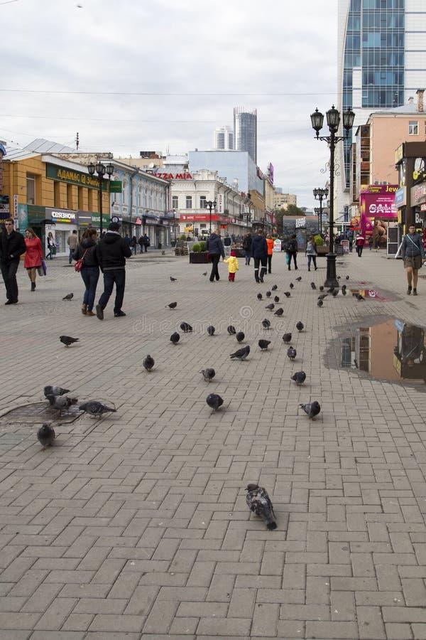 Uliczny widok w zwyczajnej ulicie, Yekaterinburg, federacja rosyjska zdjęcia royalty free
