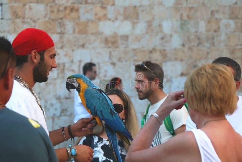 Uliczny wykonawca w Dubrovnik fotografia stock