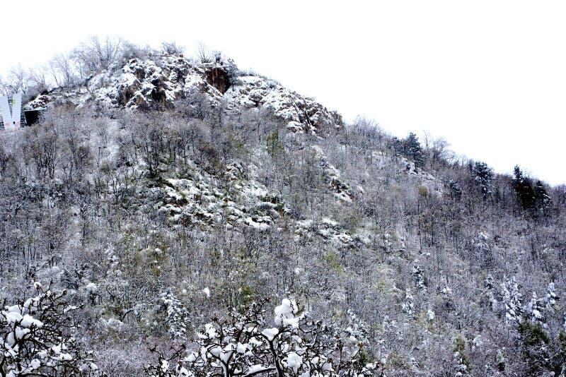 Ultima neve all'inizio della molla, l'inverno scorso giorni immagini stock