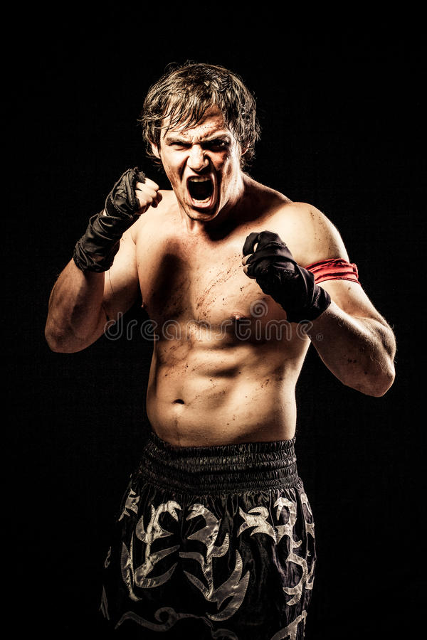 Free Ultimate Fighter Royalty Free Stock Images - 31244059