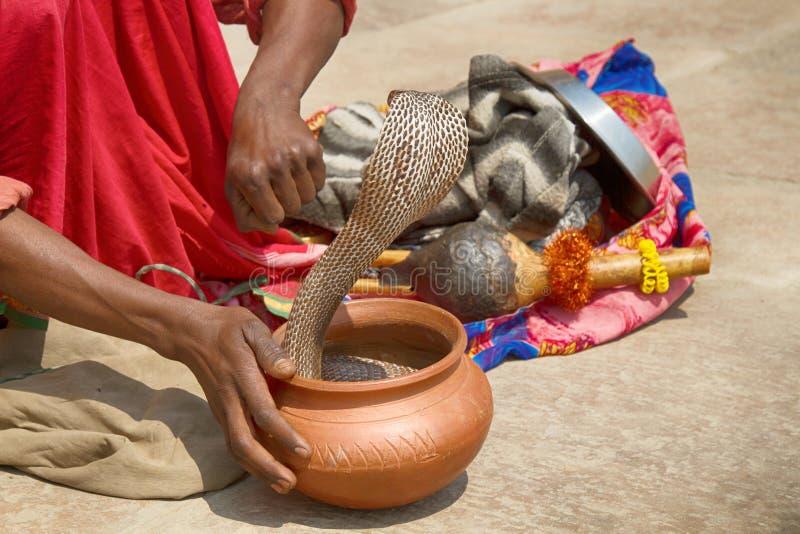 Ultimo ammaliatore di serpente (Bede) da Benares fotografia stock libera da diritti